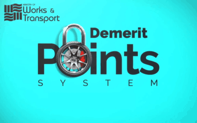 MOWT Demerit Point System